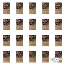 Miscellaneous Chilli Peppers - Seed kit gift box #2