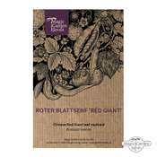 Moutarde de chine rouge 'Osaka Purple'(Brassica juncea) bio