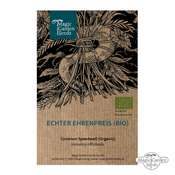 Véronique officinale (Veronica officinalis) bio